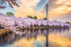 Washington DC, usa w wiośnie obraz stock
