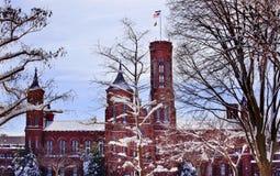 Washington DC van de Bomen van Smithsonian Kasteel het Sneeuw Royalty-vrije Stock Afbeelding
