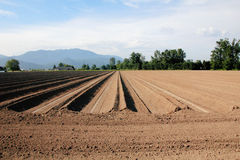 Washington Farm Land Ready for Planting Royalty Free Stock Photography