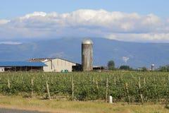 Washington Farm Silo Landscape Lizenzfreie Stockfotografie