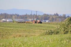 Washington Farmer Tedding Hay Immagini Stock Libere da Diritti