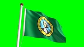 Washington flag stock video