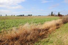 Washington Grazing and Grassland Stock Images