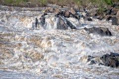 Washington Great Falls view landscape Stock Image