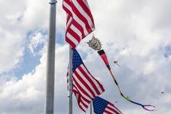 Washington Mall Kites Stock Photos