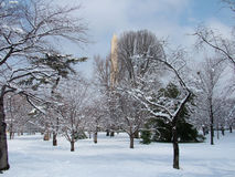 Washington Monument. View of washington monument through a snowy park stock photography