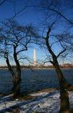 Washington Monument. Leafless trees frame the Washington Monmument during the winters months Royalty Free Stock Image