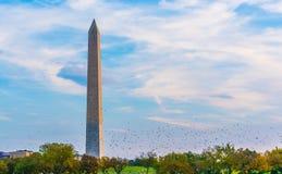 Washington Monument Foto de archivo libre de regalías