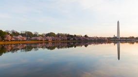 Washington Monument across Tidal Basin during cherry blossom festival. Stock Photography