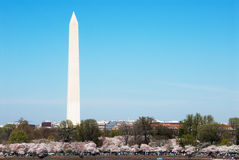 Washington Monument Royalty Free Stock Photo