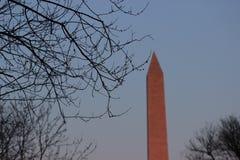 The Washington Monument Royalty Free Stock Photography