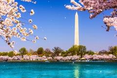 Washington Monument Stock Photos