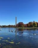 Washington Monument die boven landschap met bezinning toenemen Stock Fotografie