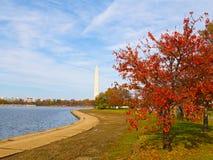 Washington Monument et bassin de marée en automne Photographie stock