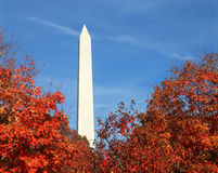 Washington Monument in Fall. Tree tops with autumn leaves and Washington Monument, Washington D.C Stock Photo