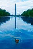 Washington Monument morning reflecting pool Royalty Free Stock Image