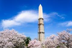 Washington Monument Stock Image
