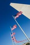 Washington monument och flaggor Fotografering för Bildbyråer