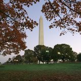 Washington Monument in Washington, D.C. Stock Image