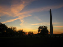 Washington Monument, Washington D C , USA Royaltyfri Bild