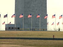 Washington Monument with waving United States flags stock video footage