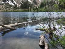Washington Mountain湖 免版税库存照片