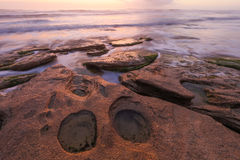 Washington Oaks Sunrise Stock Photo