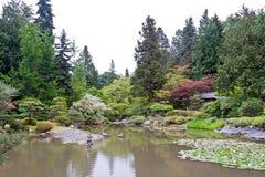Washington Park Arboretum. Detail of the Japanese Garden with red leaves trees in  Washington Park Arboretum, Seattle. west coast of United States Royalty Free Stock Photo