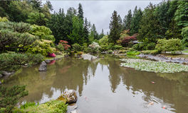 Washington Park Arboretum. Detail of the Japanese Garden with red leaves trees reflected on the lake Stock Photos