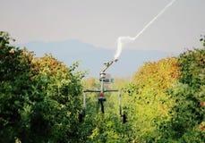 Washington Raspberries d'irrigazione Immagini Stock Libere da Diritti