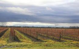 Washington Rural Winter Landscape Stockfoto