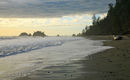 Washington's Coast. The tides roll in along the dynamic beaches of the Olympic Peninsula in Washington State Stock Images