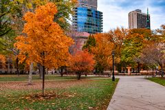 Washington Square Park in Chicago Walkway during Autumn. A walkway in Washington Square Park in Chicago leading towards a fountain during autumn with skyscrapers stock photography