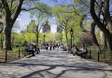 Washington Square Park New York Royaltyfri Fotografi