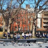 Washington Square Park in New York city, he only has love to give. Feeding the birds, great human being stock photography