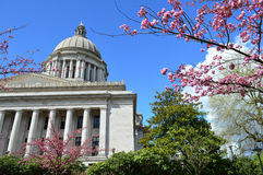 Washington State Capitol Building Exterior im Früjahr Lizenzfreies Stockbild