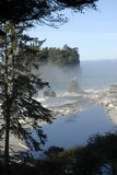 Washington State coast Stock Image