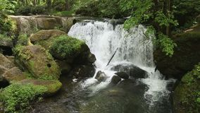 Washington State, Whatcom Falls, Bellingham