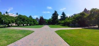 Washington University Seattle Stock Photos