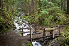 Washington Waterfall Royalty Free Stock Images