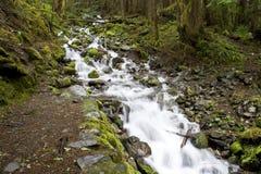 Washington Waterfall Royalty Free Stock Image