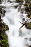 Washington Waterfall Royalty Free Stock Photo