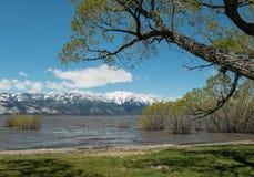 Washoe Lake Royalty Free Stock Image