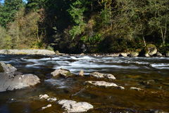 Washougal flod Arkivfoton