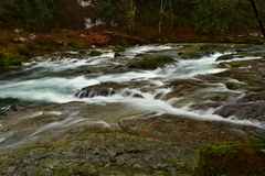 Washougal Hatchery falls. I section of the Washougal River near the fish hatchery Royalty Free Stock Photos