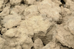 Washout earth. Abstract background showing brown earth surface Stock Image