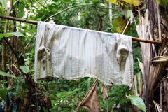 Washrag in forest. Dirty and no detail Stock Image