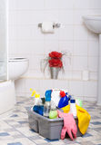 Cleaning Bathroom service room wipe tiles Royalty Free Stock Images