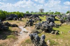 Wasini island in Kenya stock photos