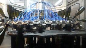 Waslijn voor flessen en het bottelen van champagnetransportband bij de fabriek stock video